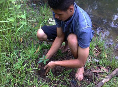 Environmental Care – VDMS Grantees RvG in Timor University (UNIMOR), Kefamenanu, NTT